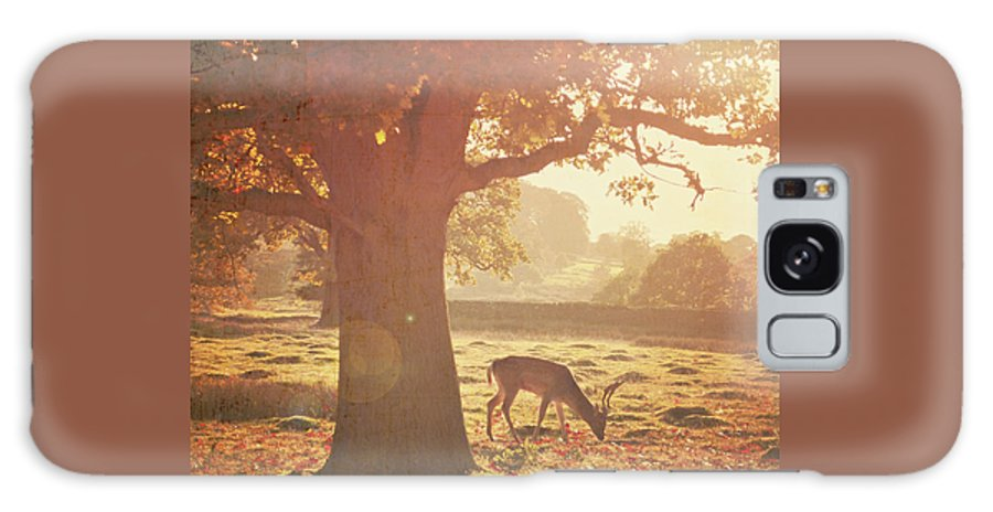 Deer Galaxy Case featuring the photograph Lone Deer by Lyn Randle