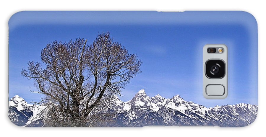 Tree Galaxy S8 Case featuring the photograph Lone Tree At Tetons by Douglas Barnett