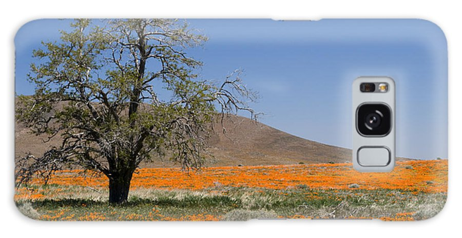 Poppies Galaxy S8 Case featuring the photograph Lone Tree In The Poppies by Sandra Bronstein