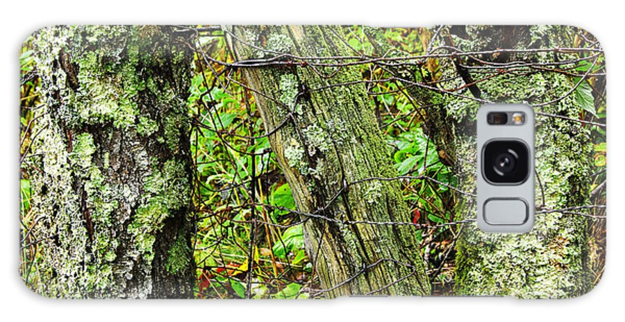 Ancient Galaxy S8 Case featuring the photograph Long Ago Fence by Thomas R Fletcher