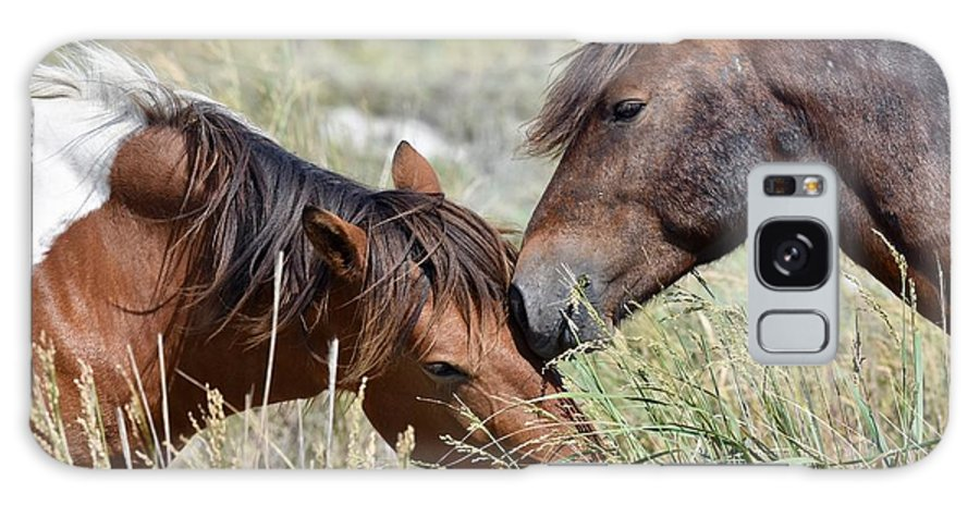 Wild Mustang Galaxy S8 Case featuring the photograph Love And Friendship by Jeramey Lende