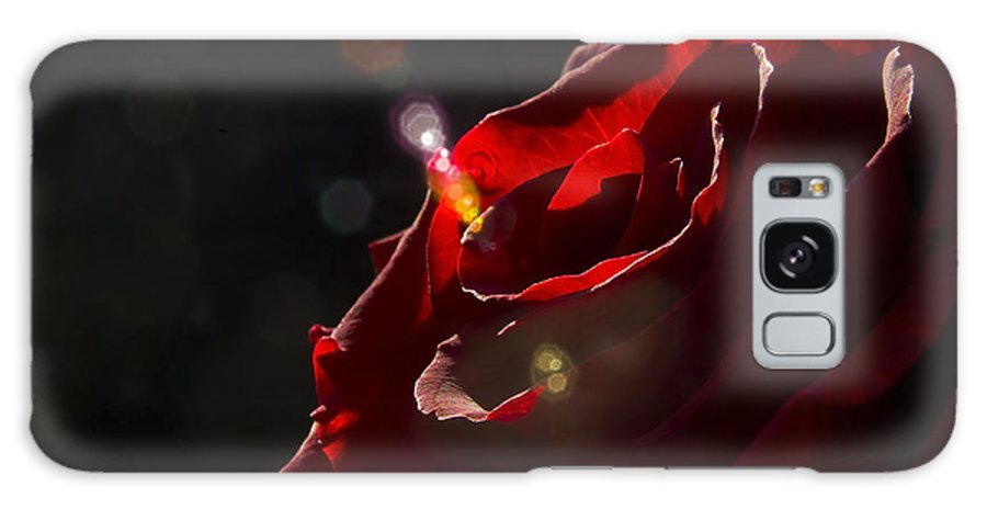 Black Galaxy S8 Case featuring the photograph Love Rose by Svetlana Sewell