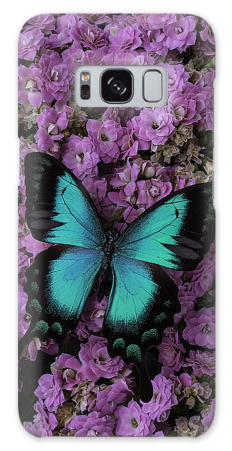 Butterfly Galaxy S8 Case featuring the photograph Lovely Green Winged Butterffly by Garry Gay