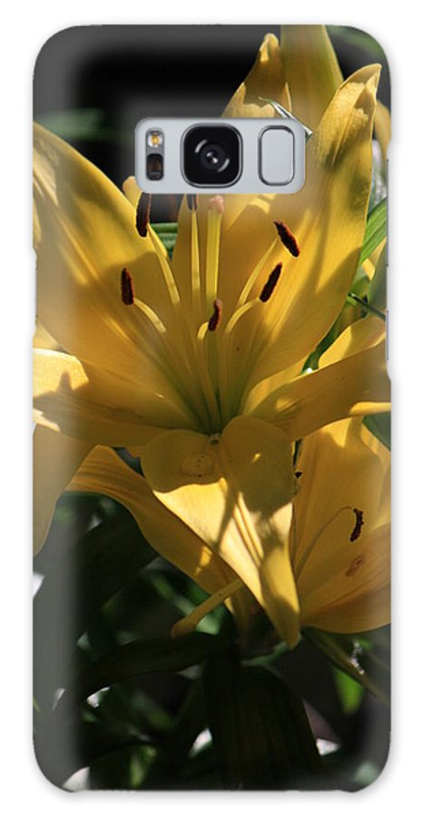 Lilly Galaxy S8 Case featuring the photograph Lover's Lilly II by Mandy Shupp