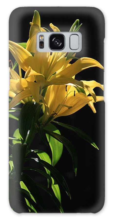 Lilly Galaxy S8 Case featuring the photograph Lover's Lilly by Mandy Shupp