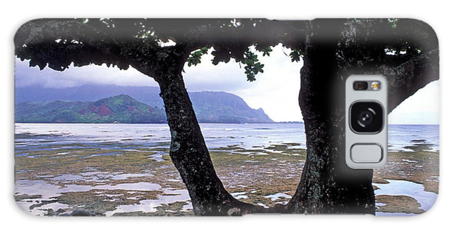 Kauai Photos Galaxy S8 Case featuring the photograph Low Tide And The Tree by Kathy Yates