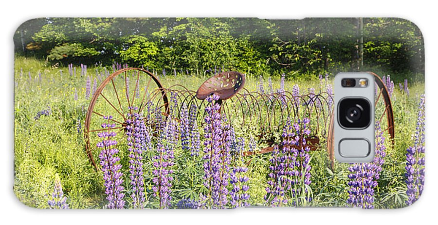 White Mountain National Forest Galaxy S8 Case featuring the photograph Lupine Festival - Sugar Hill New Hampshire Usa by Erin Paul Donovan