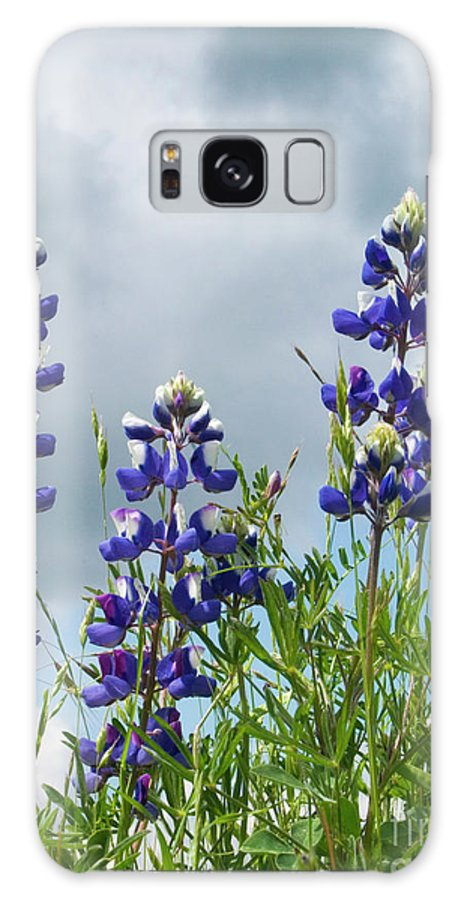 Lupine Galaxy S8 Case featuring the photograph Lupines Against The Sky by Jim And Emily Bush