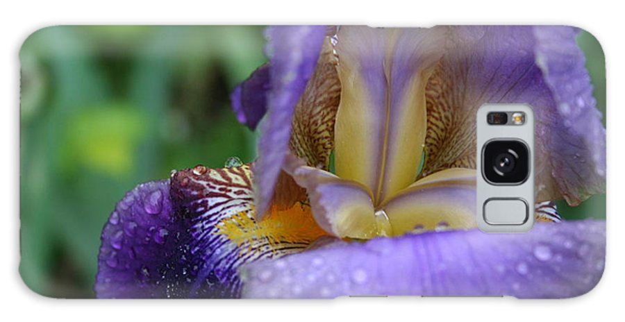 Iris Galaxy Case featuring the photograph Luscious Blooming Iris by Mary Gaines