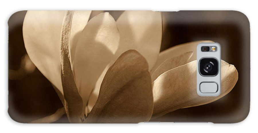 Magnolia Galaxy S8 Case featuring the photograph Magnolia Blossom Bw by Susanne Van Hulst