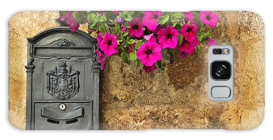 Mailbox Galaxy S8 Case featuring the photograph Mailbox With Petunias by Silvia Ganora