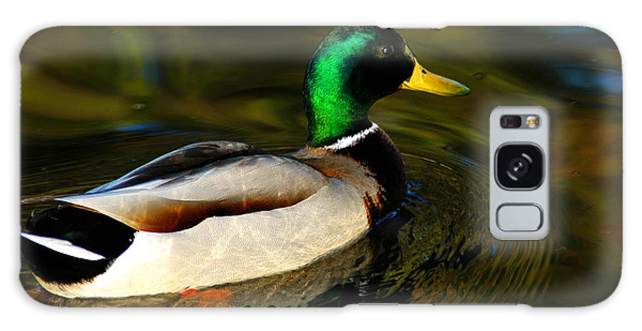 Clay Galaxy Case featuring the photograph Mallard Green by Clayton Bruster