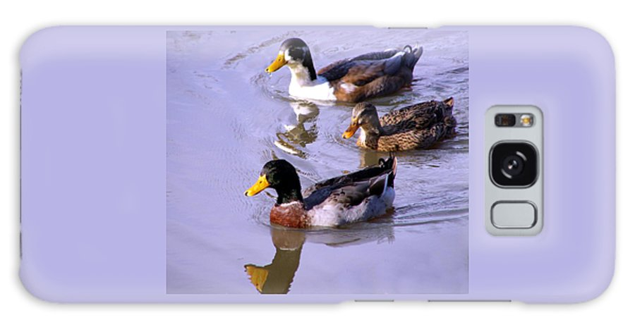 Duck Galaxy Case featuring the photograph Mallards by Kenna Westerman