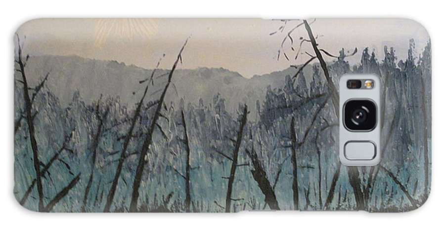 Northern Ontario Galaxy Case featuring the painting Manitoulin Beaver Meadow by Ian MacDonald