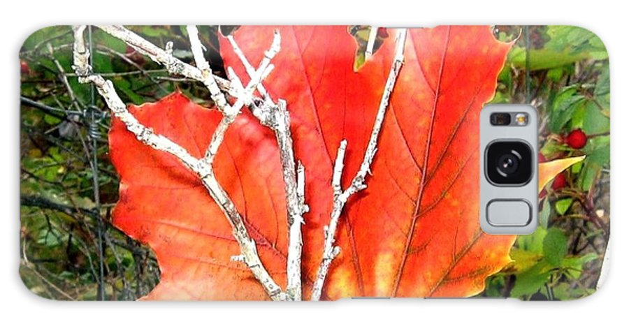Autumn Galaxy S8 Case featuring the photograph Maple Mania 6 by Will Borden