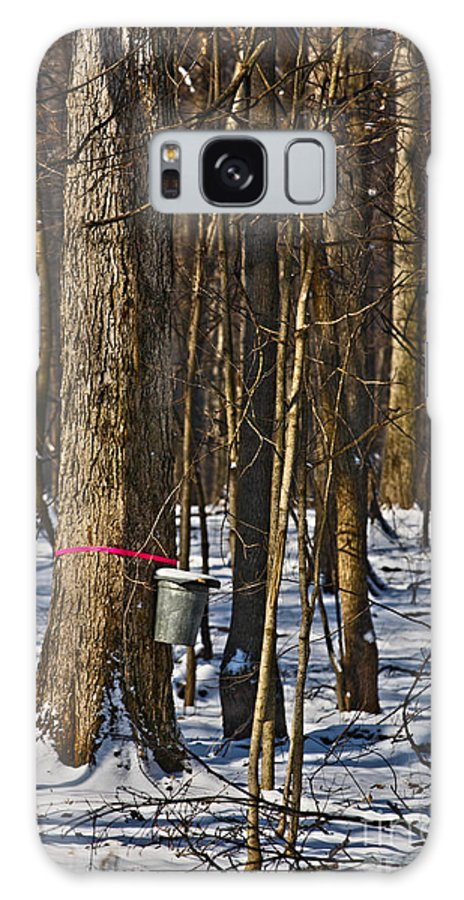 Sirup Galaxy S8 Case featuring the photograph Maple Sirup Hdr No1 by Alan Look