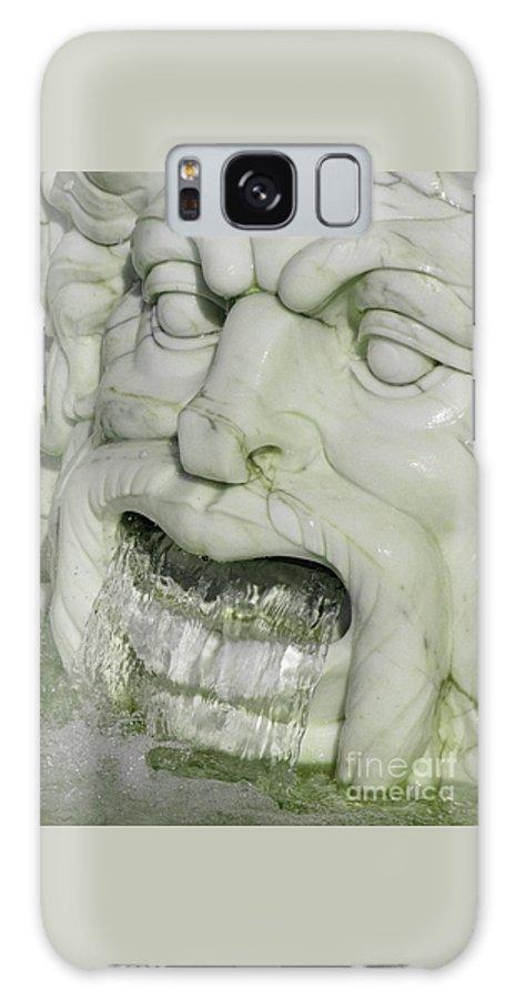 Fountain Galaxy S8 Case featuring the photograph Marble Head by Ann Horn