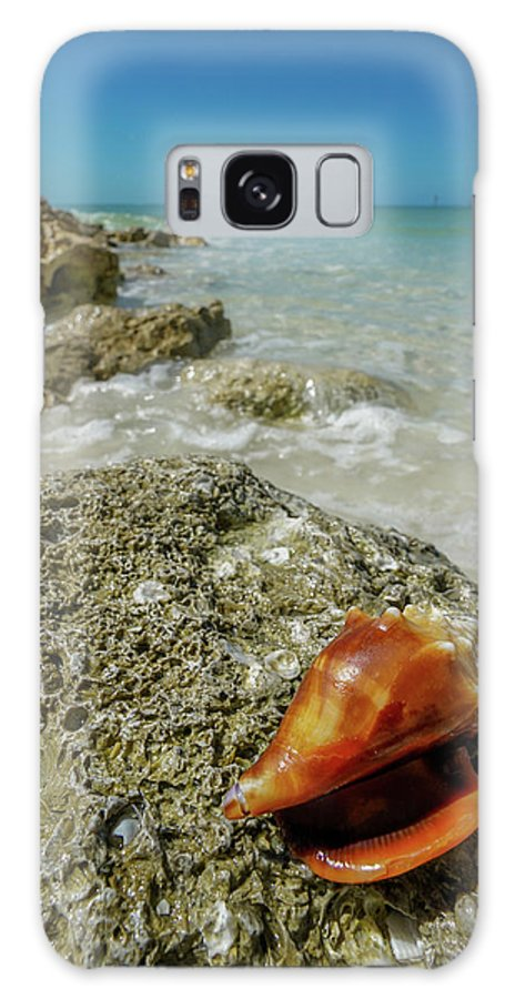 South Beach Marco Island Galaxy S8 Case featuring the photograph Marco Island South Beach by Joey Waves
