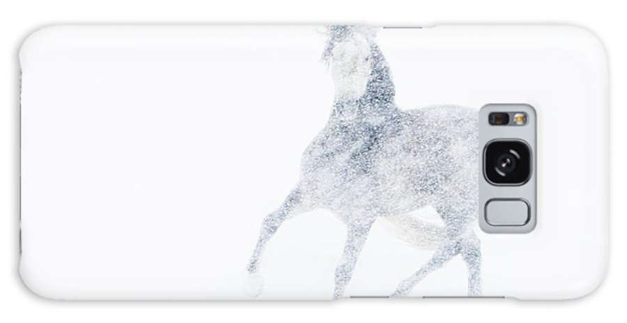 Mare Galaxy S8 Case featuring the photograph Mare In A Blizzard I by Carol Walker