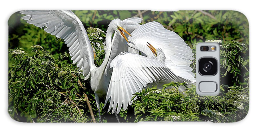 Great Egrets Galaxy S8 Case featuring the photograph Marital Bliss by Dennis Goodman