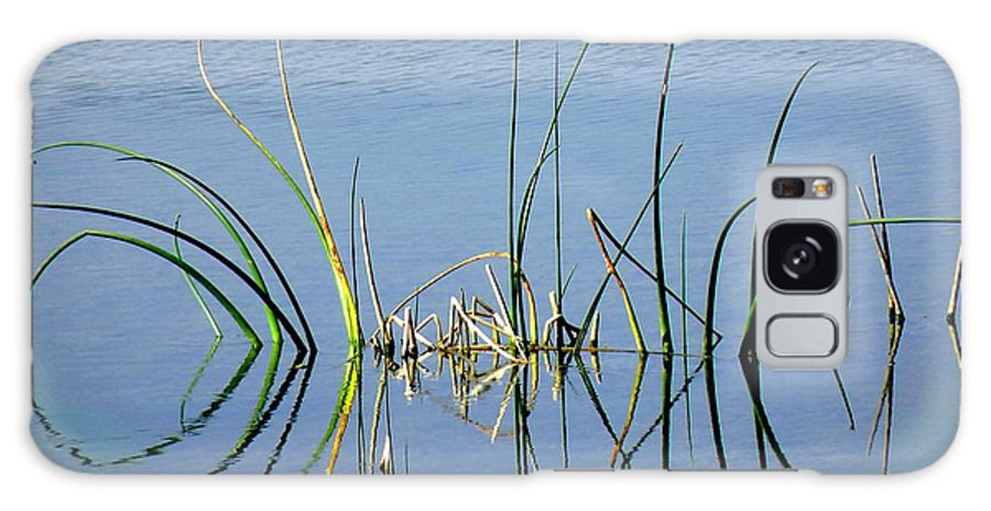 Marsh Galaxy S8 Case featuring the photograph Marsh Design by Rosalie Scanlon