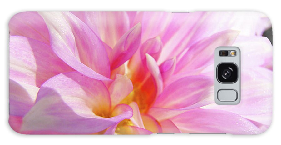 Dahlia Galaxy S8 Case featuring the photograph Master Gardeners Pink Dahlias Art Prints Baslee Troutman by Baslee Troutman