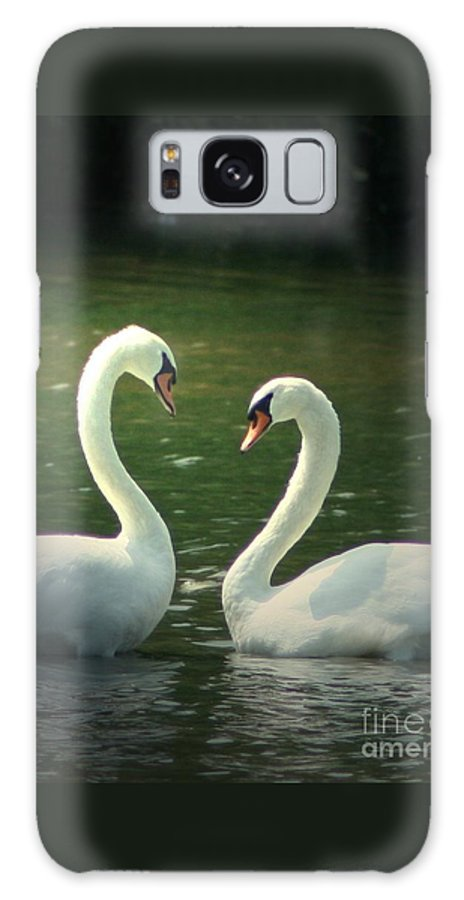 Nature Wildlife Ohio Waterscape Landscape Swans Lake Pond Galaxy Case featuring the photograph Mates For Life by Dawn Downour