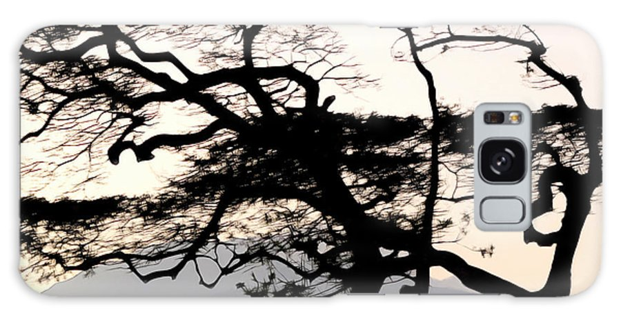 Maui Galaxy S8 Case featuring the photograph Maui Windy Tree by Joan Minchak