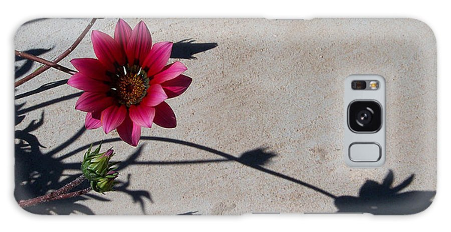Flowers Galaxy Case featuring the photograph Me And My Shadow by Kathy McClure