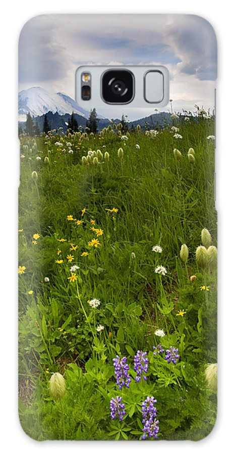 Rainier Galaxy S8 Case featuring the photograph Meadow Beneath The Storm by Mike Dawson