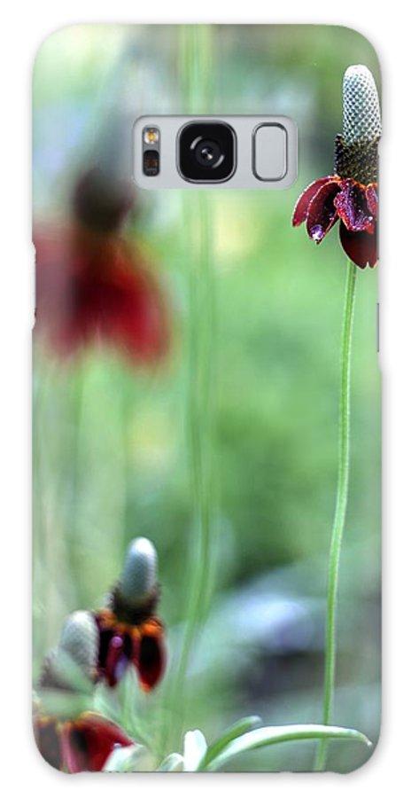 Ratibida Columnifera Galaxy S8 Case featuring the photograph Mexican Hat Flower by Carol Montoya