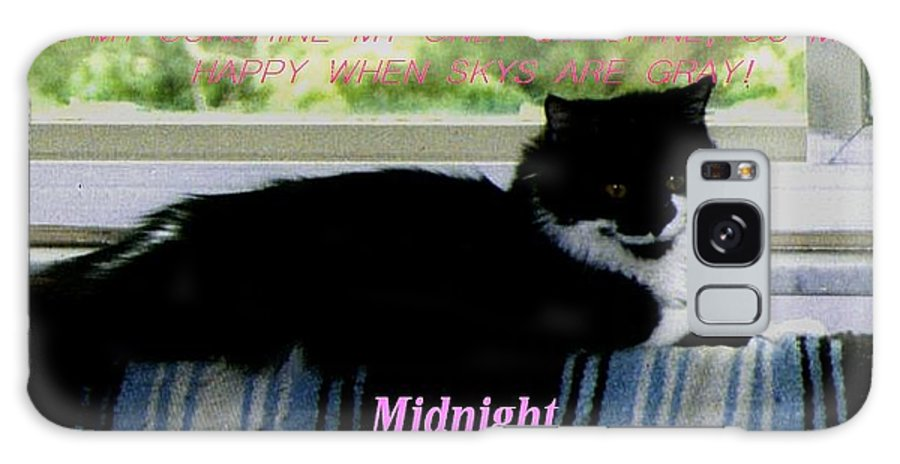 Cats Galaxy Case featuring the photograph Midnight by Crystal Webb