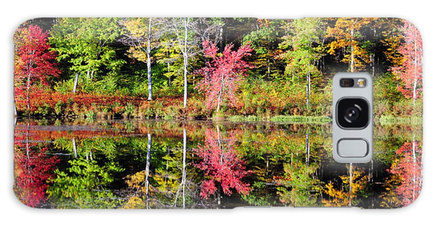 Fall Foliage Galaxy S8 Case featuring the photograph Midway by Tom Heeter