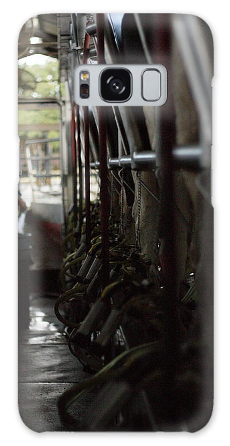Cows Galaxy S8 Case featuring the photograph Milk'n The Job by Jamie Smith
