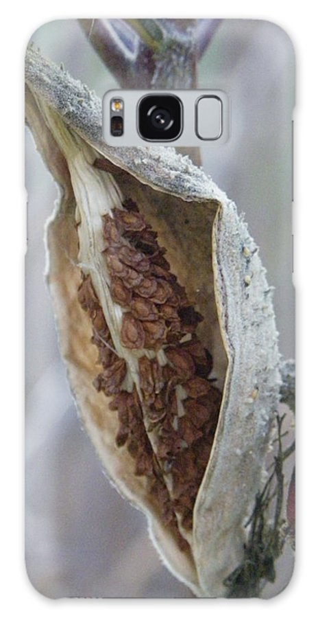 Nature Galaxy S8 Case featuring the photograph Milkweed by Peggy King