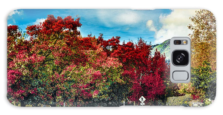 Autumn Galaxy S8 Case featuring the photograph Mill Valley Autumn by Brian Tada