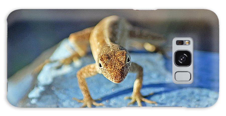 Anole Galaxy S8 Case featuring the photograph Mini Attitude by Kenneth Albin