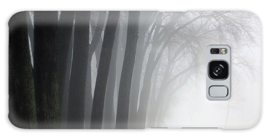 Trees Galaxy S8 Case featuring the photograph Misty Moments by Linda Mishler