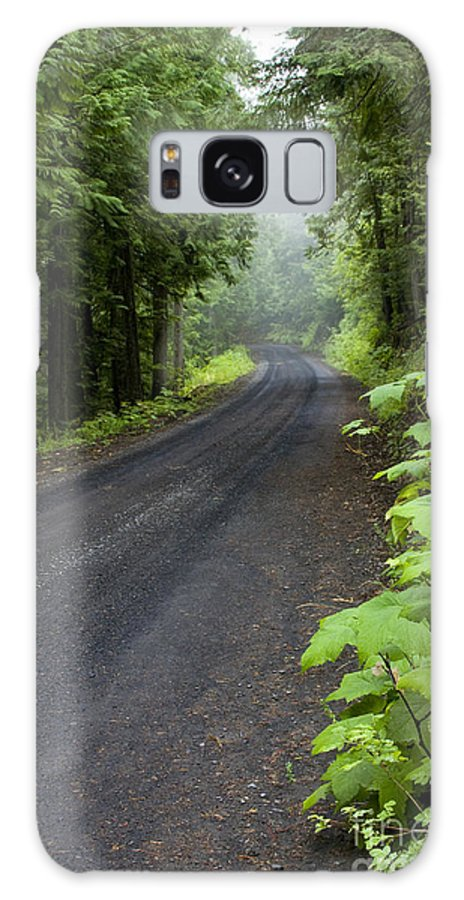 Road Galaxy Case featuring the photograph Misty Mountain Road by Idaho Scenic Images Linda Lantzy