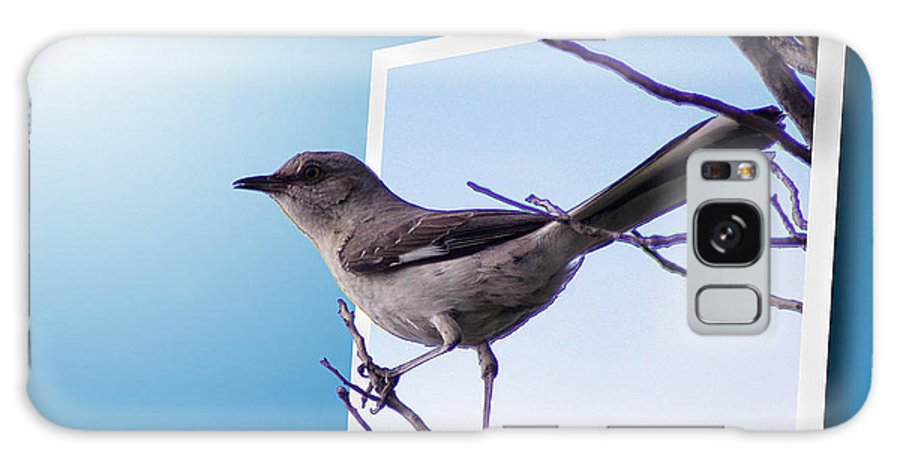 2d Galaxy S8 Case featuring the photograph Mockingbird Branch by Brian Wallace