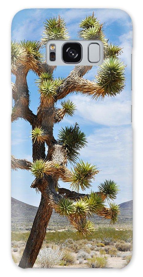 Joshua Tree Galaxy S8 Case featuring the photograph Mojave Joshua Tree by Kyle Hanson