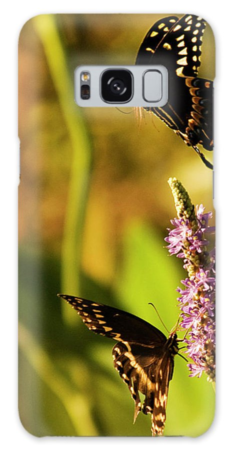 Monarch Butterflies Galaxy S8 Case featuring the photograph Monarch Butterflies In Spring At Wakulla Springs by Frank Feliciano