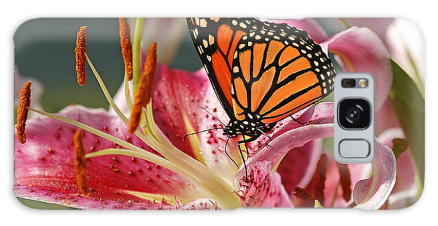 Cindi Ressler Galaxy S8 Case featuring the photograph Monarch On A Stargazer Lily by Cindi Ressler