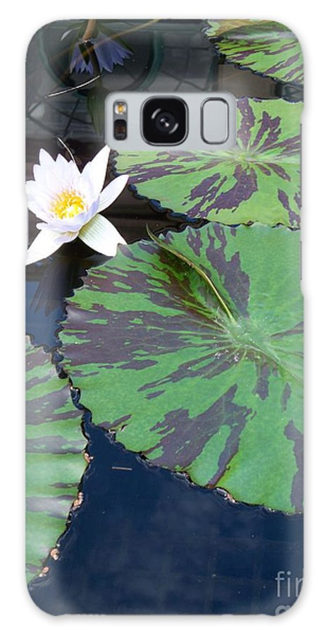 Photograph Galaxy S8 Case featuring the photograph Monet Lilies White by Eric Schiabor