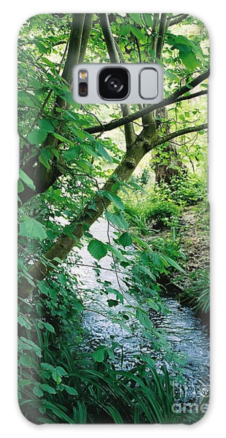 Photography Galaxy Case featuring the photograph Monet's Garden Stream by Nadine Rippelmeyer