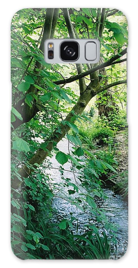 Photography Galaxy S8 Case featuring the photograph Monet's Garden Stream by Nadine Rippelmeyer