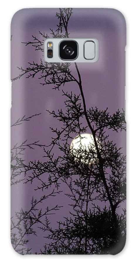 Mary Deal Galaxy S8 Case featuring the photograph Moon Trees by Mary Deal