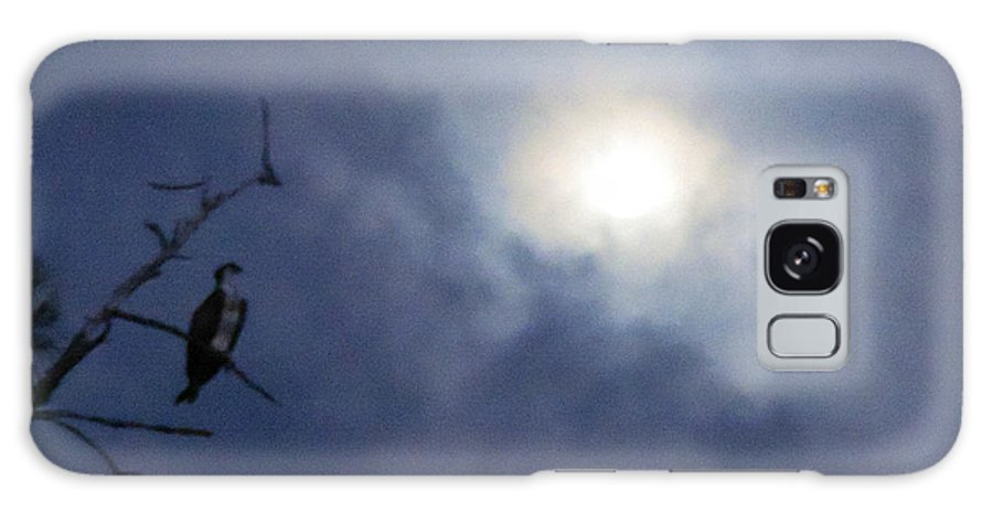 Clouds Galaxy S8 Case featuring the photograph Moonlight Hunter by Marilee Noland