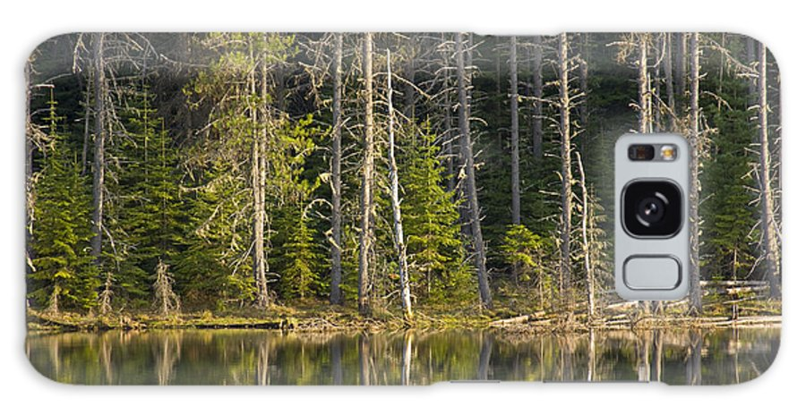 Trees Galaxy Case featuring the photograph Moose Creek Reservoir by Idaho Scenic Images Linda Lantzy