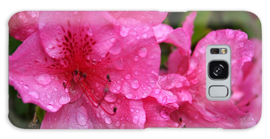Azaleas Galaxy Case featuring the photograph Morning Dew by Mary Gaines